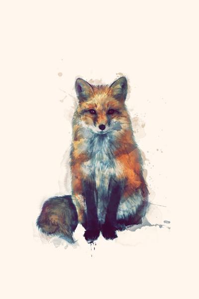 Fox_Web