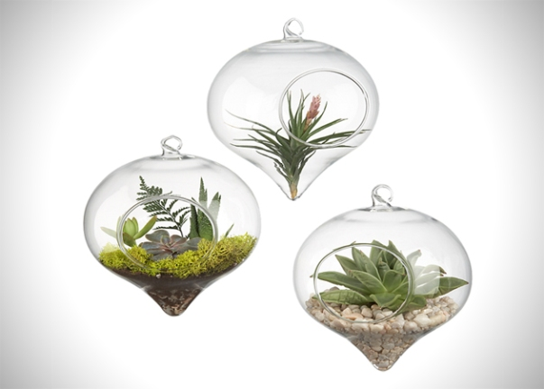 Product-Guide-10-Design-Based-Terrariums-For-Your-Home-10