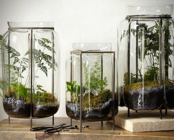 Product-Guide-10-Design-Based-Terrariums-For-Your-Home-2