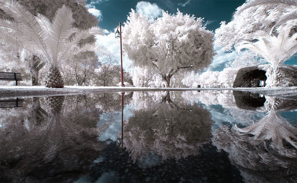 beautiful-infra-red-photographys-03