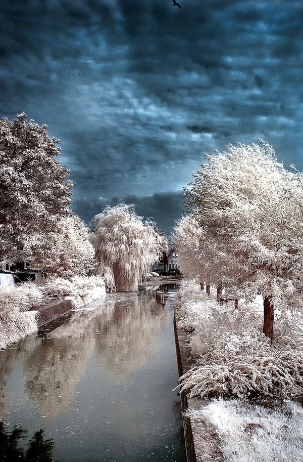 beautiful-infra-red-photographys-13