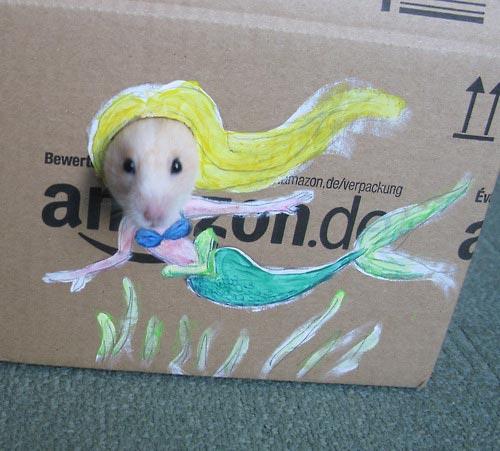 hamster_cardboard_dressing3