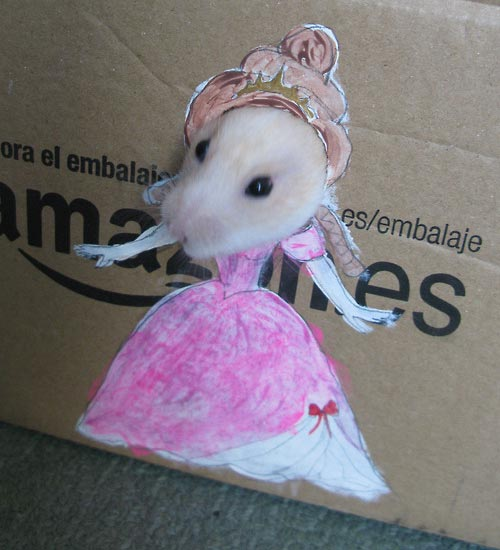 hamster_cardboard_dressing4