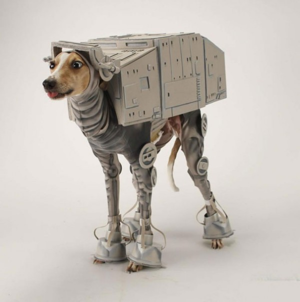 20+-Creative-Halloween-Costumes-For-Pets-15-600x605