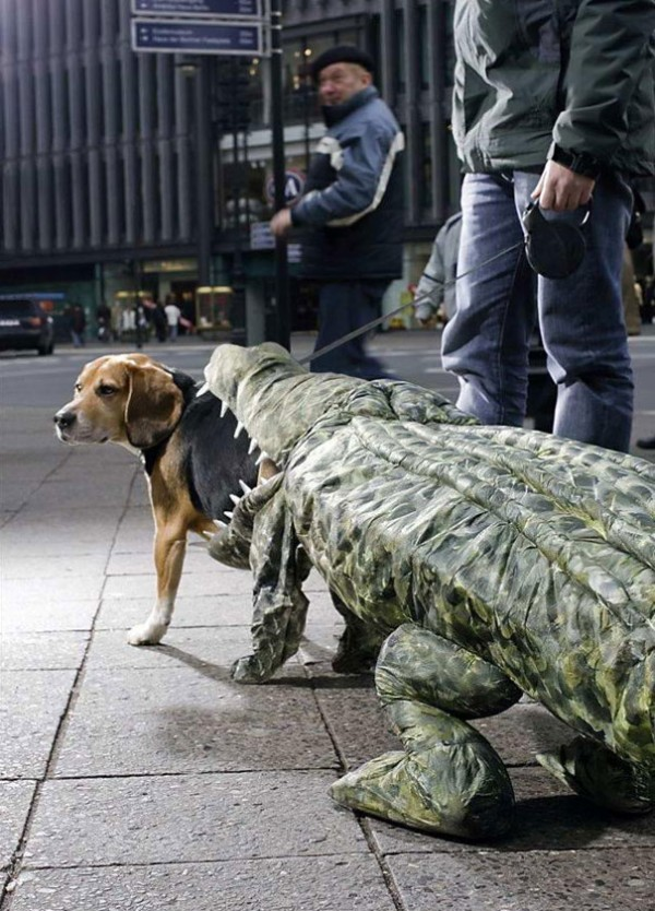 20+-Creative-Halloween-Costumes-For-Pets-20-600x834