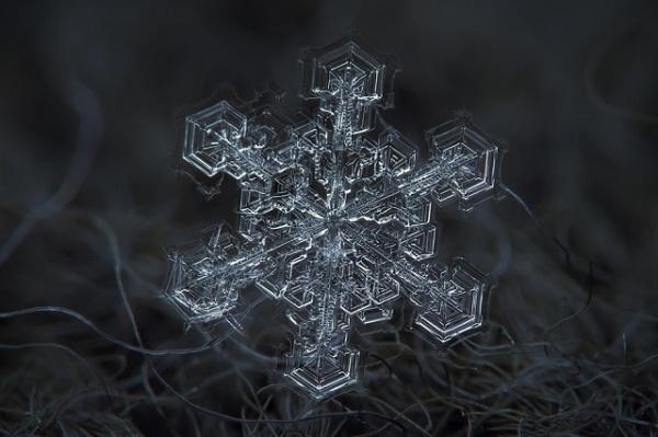 mydesignweek_Macro-Snowflakes-Alexey-Kljatov-16