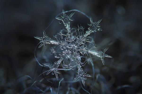 mydesignweek_Macro-Snowflakes-Alexey-Kljatov-2