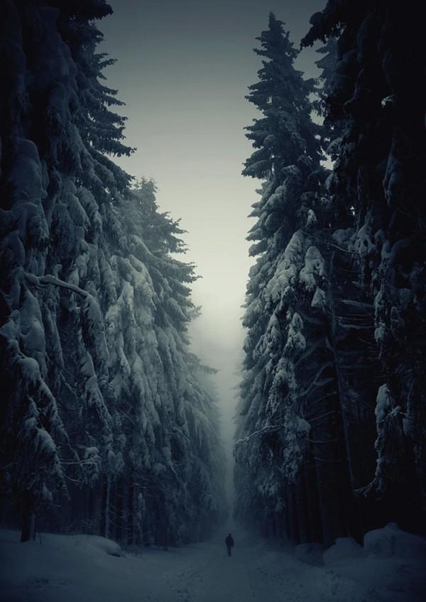 winter-landscapes-1-724x1024