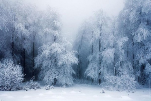 winter-landscapes-20-749x499