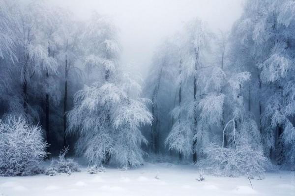 winter-landscapes-20-749x499