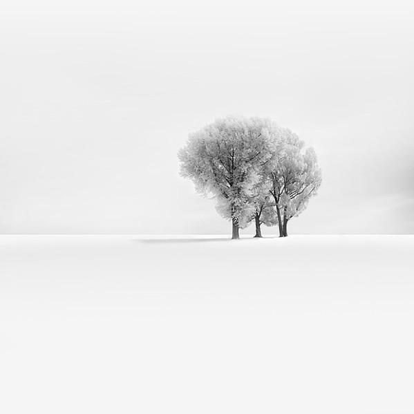 001-white-silence-vassilis-tangoulis