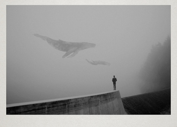 Surreal-Nature-by-Martin-Vlach-12