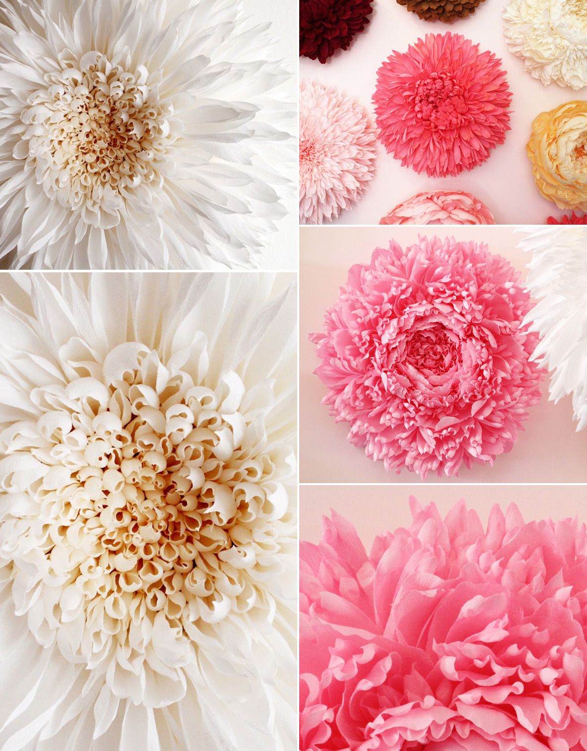 GIANT PAPER FLOWERS | &inspire